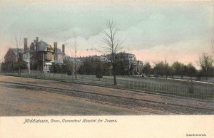 Middletown Connecticut Hospital for Insane c1900s Hand-Colored Vintage Postcard