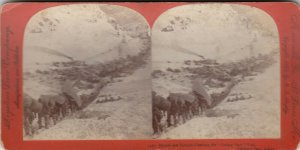 SV : Chilcoot Pass , Alaska , 1898 ; Gold Rush : #3