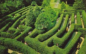 Aerial view,  The Governor's Palace Maze,  Williamsburg,  Virginia,   40-60s