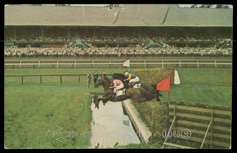 Saratoga - The steeplechase