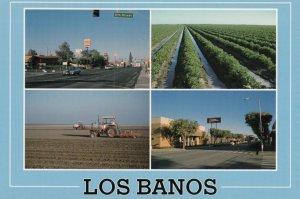 Los Banos , California , 60-80s