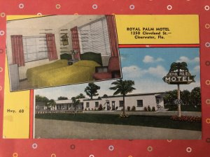 Vintage Royal Palm Motel Postcard, Clearwater, Florida