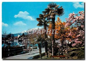 Modern Postcard Locarno II lungalago