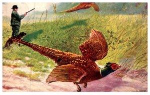 Bird ,   Pheasant , Hunters