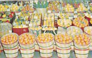 Shipper's Display Of Tropical Fruit In Florida