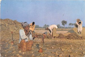 Typical Farmer Pakistan 1976