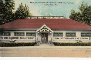 HOT SPRINGS , Arkansas , 00-10s ; Gator Farm & Marine Museum