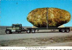 Idaho Exageration Large Potato On Truck We Grow Um Big In Idaho m