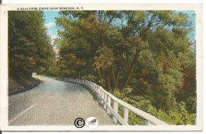 Vintage White Boarder Postcard, Winding Road Near Windsor New York, Trees