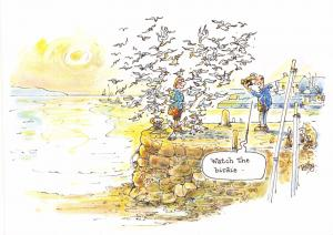 Postcard Comic Seaside, Watch The Birdie by J. Salmon #15