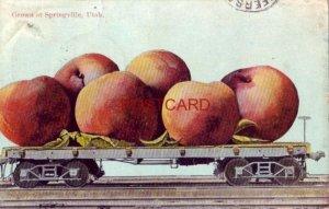 1911 GROWN AT SPRINGVILLE, UTAH peaches on a rail car