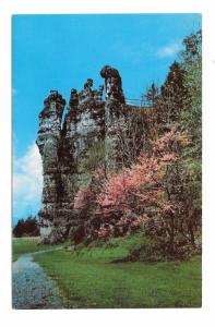 Mt Solon VA Natural Chimneys Redbud Trees Virginia Vintage Postcard