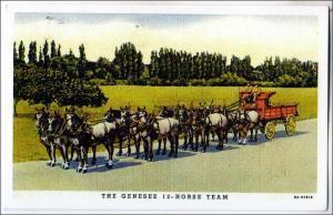 COPY - Genesee 12-Horse Team - Copy