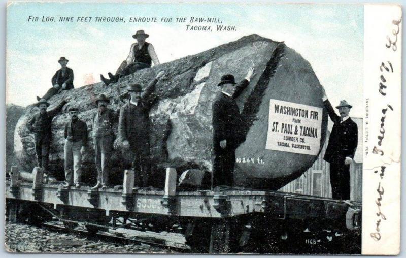 1910s Washington Logging Postcard Fir Log Rail Car St Paul Tacoma Lumber Co