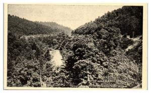 17 Mile Grade near Mt. Lake Park, MD 1911 International Bible Students Postcard