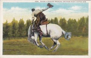 Horses Cowboy Riding A Bucking Bronco Curteich