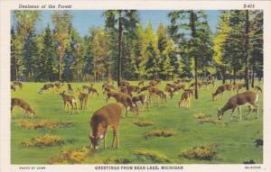 Michigan Greetings From Bear Lake Curteich