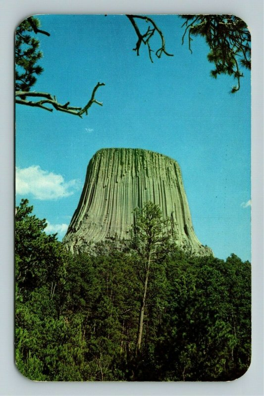 Devils Tower WY- Wyoming, Devils Tower Natl Monument, Chrome Postcard