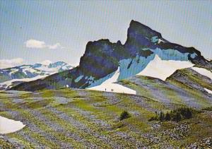 Canada Black Tusk Garibaldi Provincial Park British Columbia