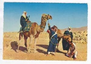Camel-drivers, LIBAN, PU 1950s