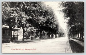 Nappanee Indiana~East Walnut Street Homes~Porches Close to Road~1920 B&W