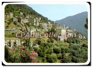 Postcard Modern Charm And Colors Of Corsica Olmeto Vue Generale