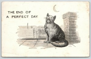 Comic Pun~End of a Perfect Day~Cat Sings at Crescent Moon From Rooftop~1921
