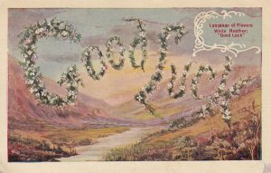 LANGUAGE OF FLOWERS, White Heather ; Good Luck, Valley View, 1900-10s