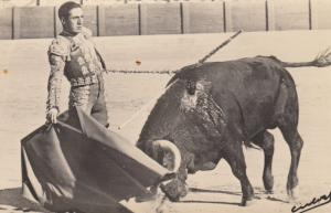 RP; Bull fighter and wounded bull, dans son style, 00-10s