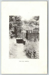 Granville Ohio~Steps Down in Old Spring~Picket Fence~Centennial Postcard~1905