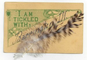 I am being tickled with BARRINGTON, Illinois, Feather attached, PU-1912