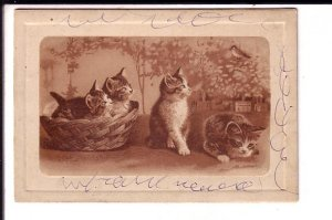 Fold-over 1905 Christmas Card with Kittens, Gunnersbury Lane, Acton, W.
