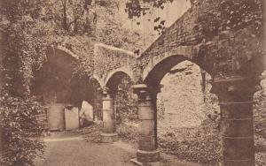 Abbaye De Saint-Bavon, Ruines De La Cave Construite Entre 1223 et 1251, GAND ...