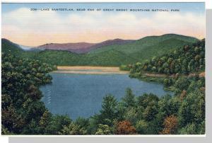 Smoky Mountains Nat'l Park,NC/TN Postcard,Santeetlah,Nr Mnt