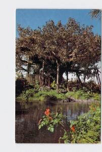 VINTAGE POSTCARD WALT DISNEY WORLD ADVENTURELAND SWISS FAMILY ISLAND TREEHOUSE #