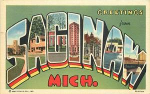 Large letters multi View Signal Michigan 1946 Postcard Reid Teich linen 3332