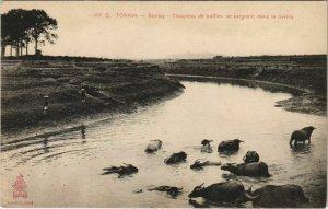 CPA AK VIETNAM Tonkin - SONTAY - Troupeau de buffies (119259)