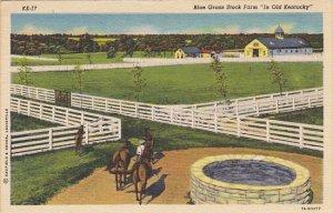 Kentucky Louisville Blue Grass Stock Farm Horses 1949 Curteich