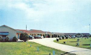 Dillon SC Blue Star Motel Located on U.S.301 Postcard