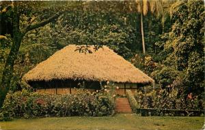 Vintage Postcard A Tahitian Fare Hut Tahiti United Airlines photo.
