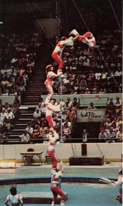 Ringling Brothers-Barnum & Bailey Circus. Teeterboard Tacticians
