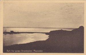 DENMARK; Parti fra Lynaes Strandbakker Maaneskin, 10-20s