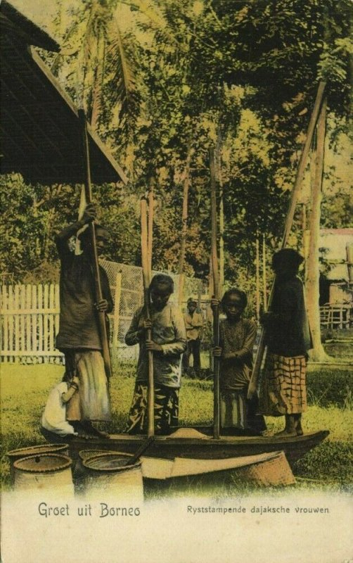 indonesia, BORNEO, Dayak Women pounding Rice (1900s) Postcard