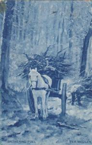 Gathering Wood , Ter Meulen , 1908 ; TUCK 6725 , 1912