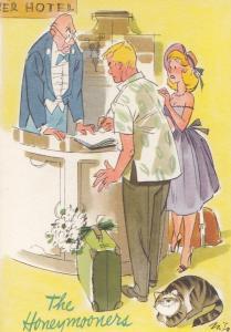 Hotel Cat in Reception Watching Honeymoon Couple Arrive Comic Postcard