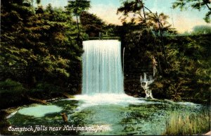 Michigan Kalamazoo Comstock Falls 1909