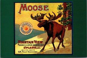 Postcard Moose Brand Orange Box Crate Label Ca 1910 Fruit Upland