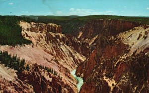 Yellowstone Nat'l Park, WY, Downstream from Grand View, 1963 Postcard g8224