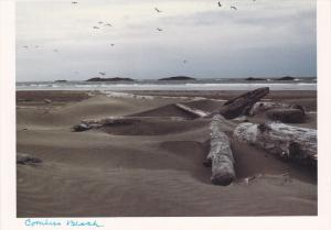 Combers Beach, Vancouver Island, British Columbia, Canada, 80s