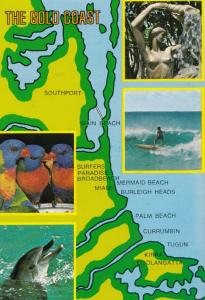The Gold Coast Wildlife MAP Australian Rare Australia Postcard